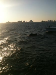Fishing Fort Lauderdale Florida